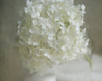 Flower Photography, Hydrangeas, Dreamy Flower Print, 3 Options, Cream White, Sepia, Black&White, Elegant Home Decor, Bedroom, Bath, Spa Art