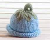 Baby Knit Hat, Maine Blueberry Baby Hat - newborn to 1 year old