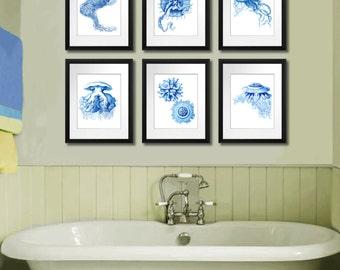 Aquatic Blue Jellyfish Print Set of 6 Boy's Room Sea life art print 8x10 Coastal Decor Bathroom Wall Art Decor Gnosis Picture Archive