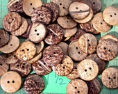 Buttons, large, coconut, 1 1/2 inch coconut shell buttons, 14 of them, sewing, crafts, scrapbook, renewable resource, aloha shirt supply