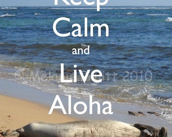 11x14 Keep Calm Live Aloha Hawaiian Monk Seal Photograph Print Hawaii by Melanie Pruitt