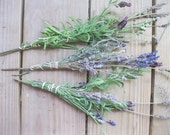 LAVENDER naturally DRiED FLOWER Bunches