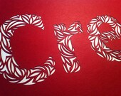 Made to order paper cut letter C for raynay930