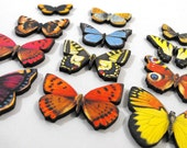 Fresh Butterflies - Collection of 12 Wooden Laser Cut Pieces