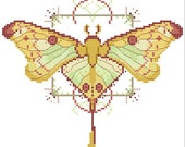 Luna Moth Cross stitch pattern