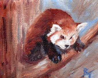 Red Panda aceo Original oil painting