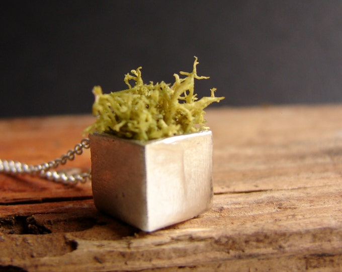 Moss Necklace, Eco Friendly, Terrarium Necklace, Terrarium, Terrarium Jewelry, Plant Jewelry, Moss Jewelry, Gardener, Naturalist
