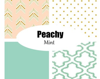 Custom Crib Bedding-3 piece-Peachy Mint