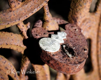 Rusty Iron Fence & Lock 8x10 Fine Art Photograph