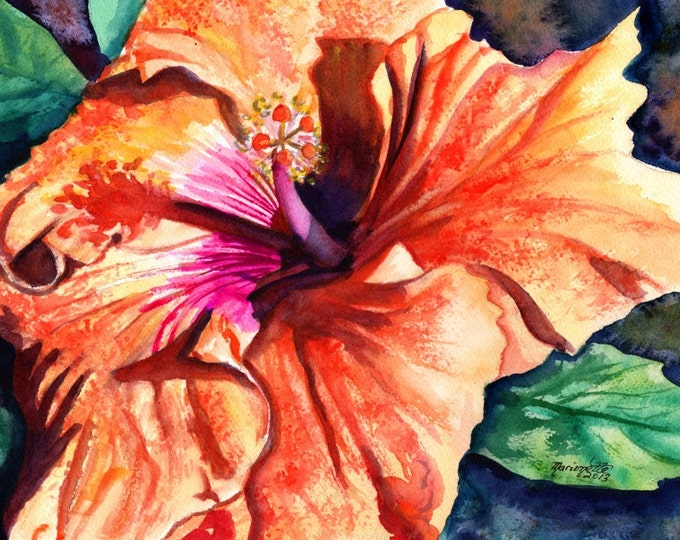 Tropical Hibiscus 5x7 art print from Kauai Hawaii hot pink orange exotic flower