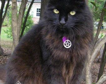 Witches Familiar Pentacle Cat Collar . Black, Blue, Orange Purple or Red . Adjustable