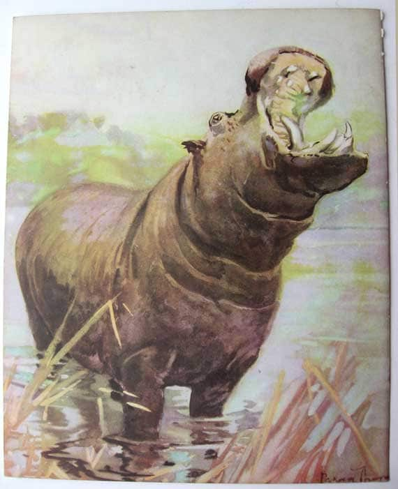 Vintage 1930 39 s jungle animals large by kelleystreetvintage for Classic jungle house for small animals