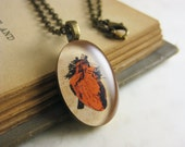 """Red Anatomical Heart Vintage Illustration Necklace - Valentine's Gift - Found Illustration Resin Jewelry - 19"""" bronze chain"""