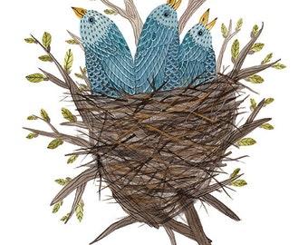 Bluebird Fledglings Print, baby birds, birds nest, bird art, giclee print, nursery art, childrens art, illustration