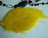 FEATHER PAD  Sunny Side Up Yellow / 123