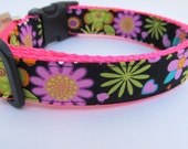 "Cute Girl Dog Collar ""Vintage Flower Girl"" Cute Flowers Hearts Pink Green Yellow Turquoise Hot Pink Nylon Webbing"
