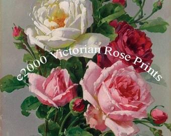 Summer Rose Bouquet, Art, Print, Catherine Klein, Half Yard Long, Roses, C Klein, Shabby Chic