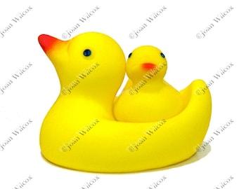 Cute Rubber Ducky Photo Colorful Bird Child's Toy Original Fine Art Photography Print