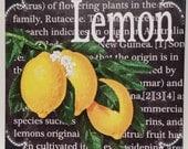 Kitchen Art Custom Definition Of Lemon Fruit Wooden Wall Plaque