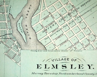 1878 Large Rare Vintage Map of the Villages of Elmsley, Enniskillen, and Tyrone, Ontario, Canada