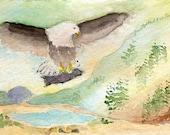 ACEO Original Watercolor Eagle's Catch