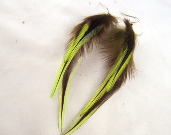 Lime green badger feather earrings
