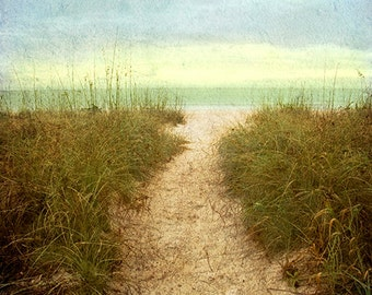 One Way Path Art Print - Beach photography, landscape photography, naples, florida, path to beach, grass, gulf, art print.