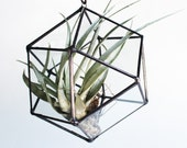 Recycled Glass Cube Octahedron Hanging Planter - Stained Glass Air Plant Holder