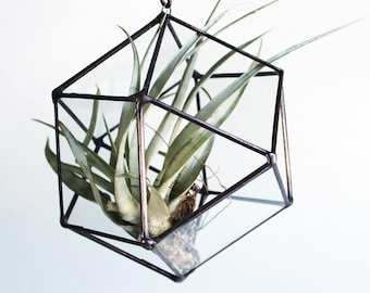 Recycled Glass Cube Octahedron - Small Stained Glass Air Plant Holder