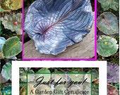 Bird baths / feeders / SCULPTURES / Fairy Garden Decor - For garden or hosta lovers, let them choose - 50 Dollar Gift Cert - Retirement gift