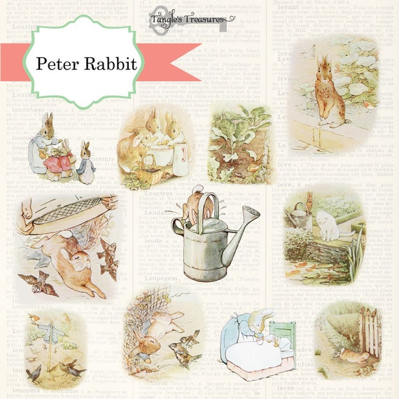 Peter Rabbit Invitations as awesome invitation ideas