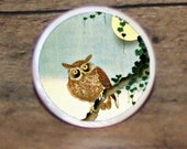 Brown OWL Full Moon bird Tie tack or Cuff links or Ring or Pendant or Brooch