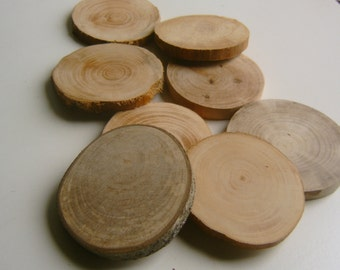 100 Drilled Tree Branch Slices 2.5-3.5 inch Wholesale Bulk lot