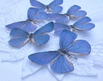 Hand Cut silk butterfly hair clip - Soft Blue