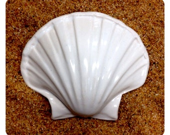 WHITE SHELL Tile