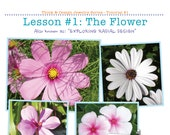 Think & Design 01 The Flower PDF tutorial