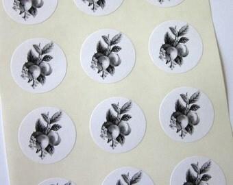 Peach Fruit Stickers One Inch Round Seals