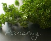 Parsley Seed - Hilmar Gigante d-Italia Flat Leaved Organic Parsley Seeds
