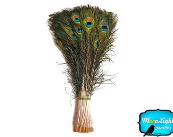 "USA Peacock Feather, 100 Pieces - 20-25"" NATURAL Peacock Tail Eye Wholesale Feathers (bulk) : 3575"
