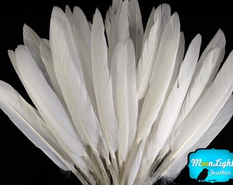 White Duck Feathers, 1 Pack - WHITE Duck Cochettes Loose Feathers 0.3 oz. : 448