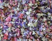 Pink Larkspur, Dried Larkspur, Flower Confetti, Pastel Confetti, Pink, Wedding Flowers, Dried Flowers, Table Decor, Flower Girl, 1 US cup