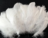 40-60pcs Goose Satinettes loose feathers, 6 grams, Snow White