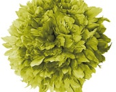 1/2 yard Vogue goose Feathers Fringe - Goose Nagorie in Pear - Spectacular quality (1/2yard) (030)