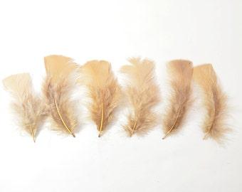 12pcs Turkey Flat Feathers-Dark Beige