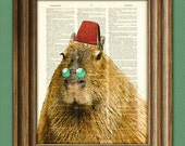 CAPYBARA Claudio the Capybara, the world's largest and most fabulous rodent with FEZ illustration dictionary page book art print
