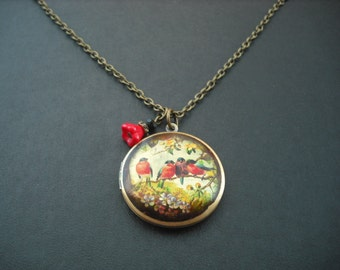 SALE - family birds altered photo locket necklace - only one avaialble