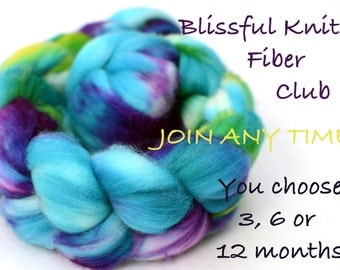 fiber club - hand dyed luxury wool, silk or bamboo roving - 6 month membership - blissful knits club
