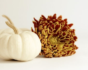 White Pumpkin and Orange Mum Photograph shabby chic autumn home decor shabby chic country cottage golden 8x10