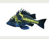 """China Rockfish, original gouache painting print, printed on EPSON watercolor paper, paper size 5""""x7"""""""