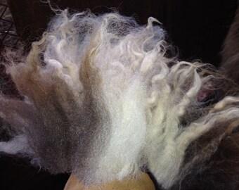 Atti's LOVELY LILAC Jacob Sheep fleece